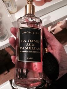 La Dame aux Camelias by Jardins D'Ecrivains